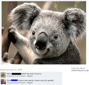 facebook-dummies-11.jpg