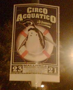 acquatico2.jpg